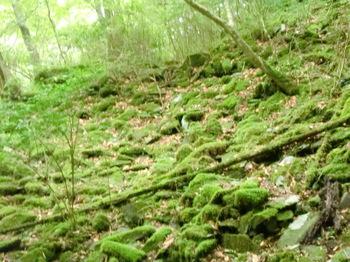 つるべ落としの滝ー3.JPG