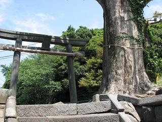 城山神社ー1.JPG