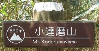 小達磨山.JPG