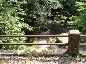 水神社ー3.JPG