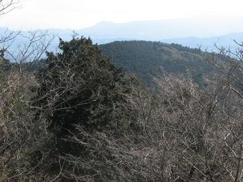 発端丈山ー15.JPG