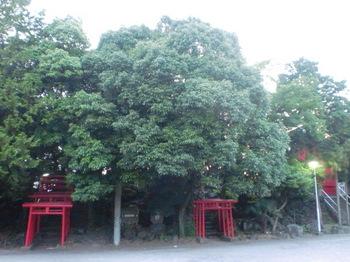 稲荷神社ー3.JPG