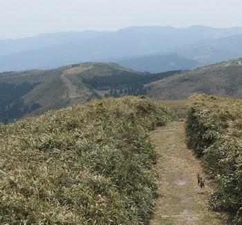 達磨山ー11.JPG