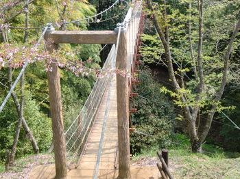 駿河平自然公園ー1.JPG