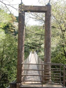 駿河平自然公園ー3.JPG