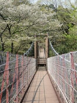 駿河平自然公園ー6.JPG