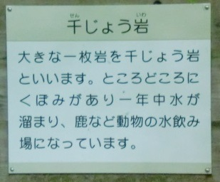 つるべ落としの滝ー5.JPG