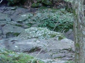 つるべ落としの滝ー6.JPG