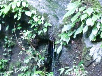 つるべ落としの滝ー9.JPG